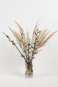 feathers in vase