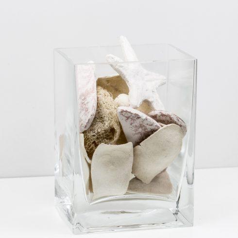 seashells in square vase