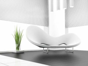 modern art-deco room with contrasting plant